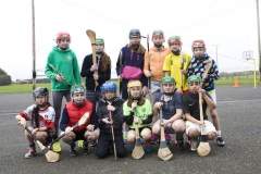 Future of Hurling & Camogie