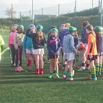 Hurling and Camogie blitz