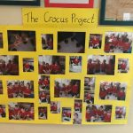 The Crocus Project.