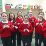 Camogie county medals.