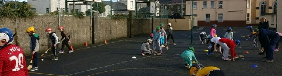 Hurling trainings back
