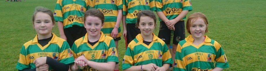 Camogie 7s
